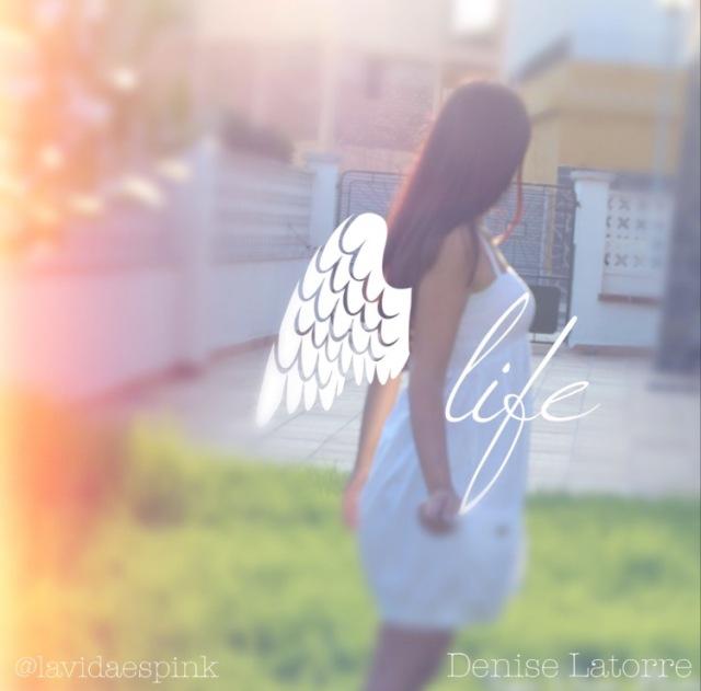 fly life